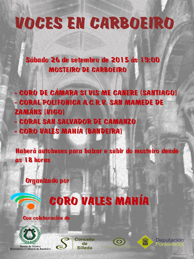 cartel carboeiro 2015web